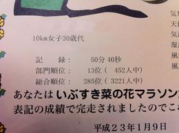1000000287_no_name.jpg