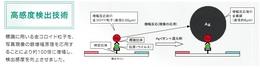 IMG_20131223_0001.jpg
