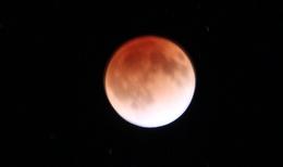 orange_moon.JPG